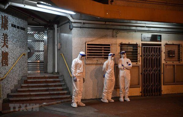 COVID-19: Hong Kong xác nhận trường hợp thú nuôi nhiễm SARS-CoV-2
