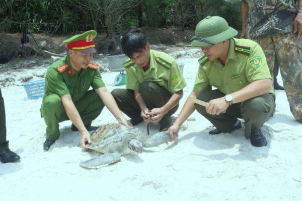 Lạ lùng huyện cấp sổ đỏ lấn Vườn quốc gia Bái Tử Long