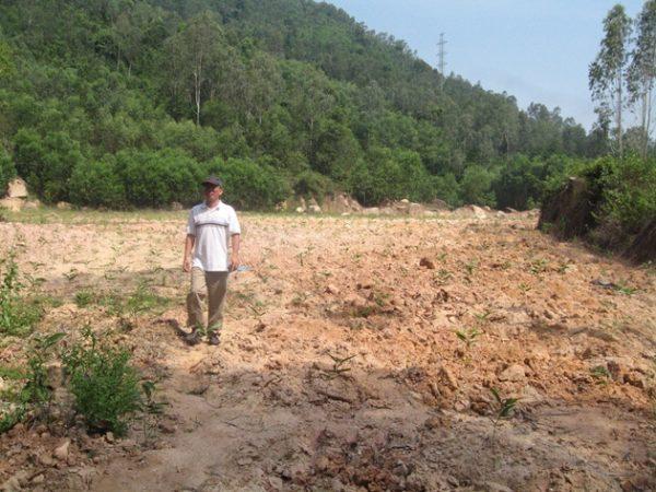 TP Pleiku (Gia Lai): Khai trừ khỏi Đảng 6 cán bộ để mất rừng phòng hộ Bắc Biển Hồ