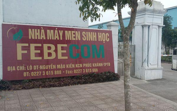 Một công ty ở Thái Bình bị xử phạt 350 triệu đồng